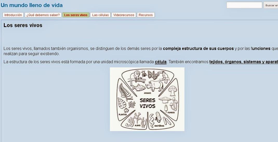 https://sites.google.com/a/murciaeduca.es/un-mundo-lleno-de-vida/los-seres-vivos