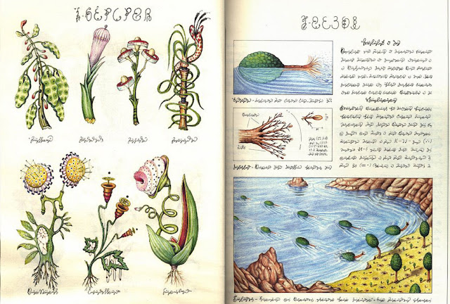 Codex seraphinianus (Кодекс Серафинианус) - самая странная книга необычные книги