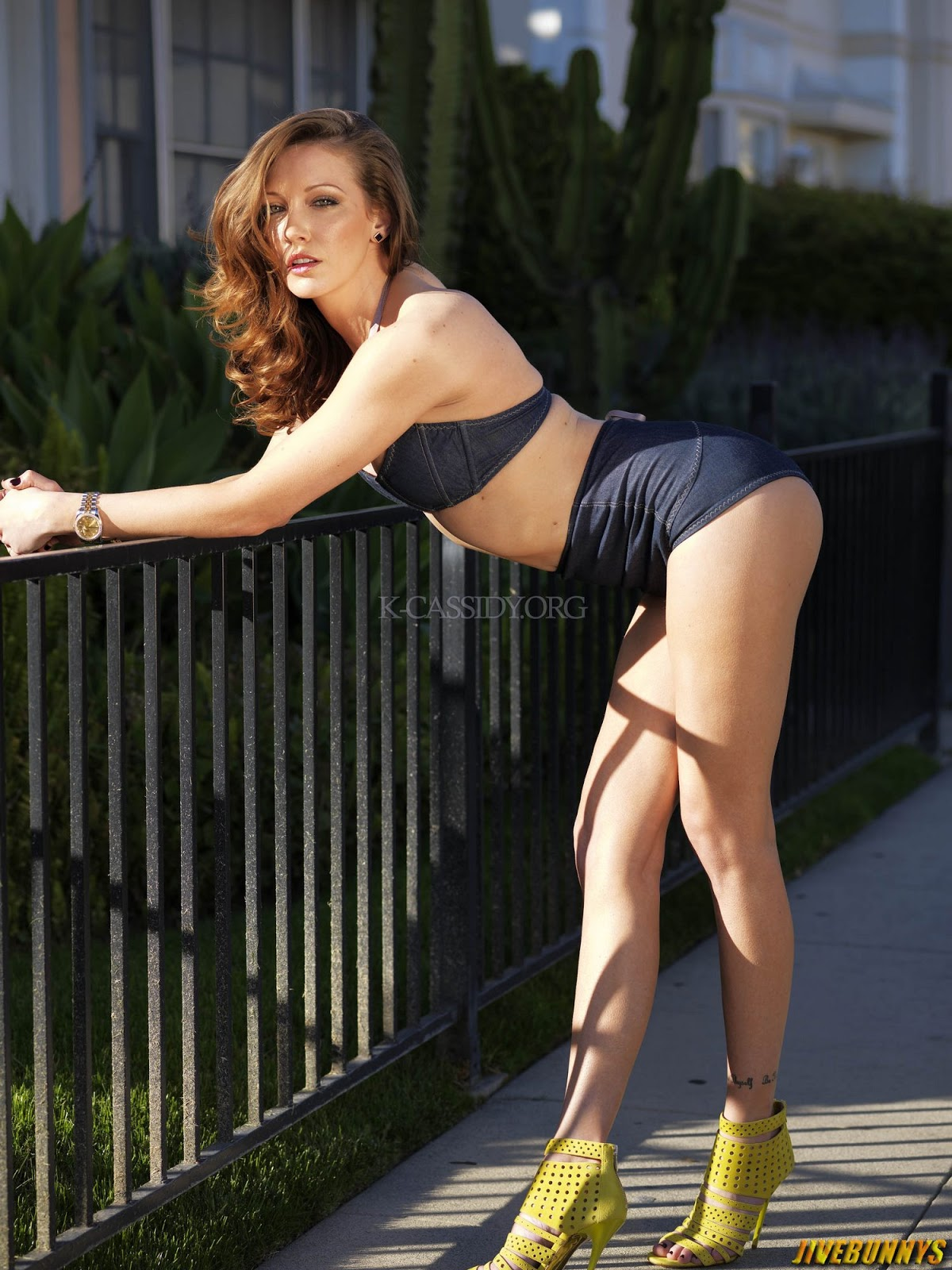 Jivebunnys Female Celebrity Picture Gallery: Katie Cassidy Sexy Photos ...