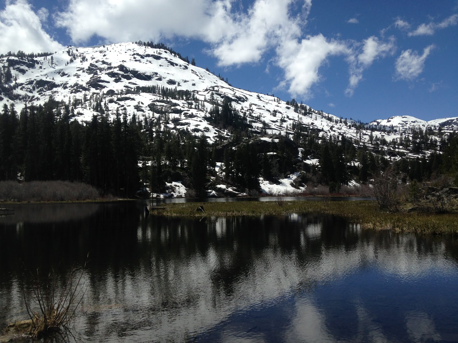 Lovely Lily Lake, in California