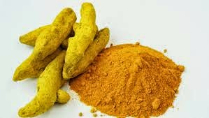 NCDEX Turmeric, Free Agri Tips, free agri call, free commodity tips, Futures Trading Tips