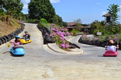Zoocobia-Fun-Zoo,Clark-attraction,Zooc,luge