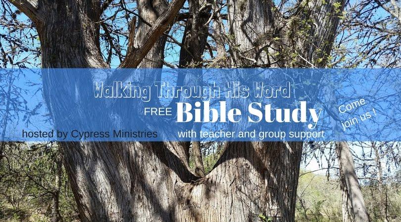 Walking through His Word Bible Study