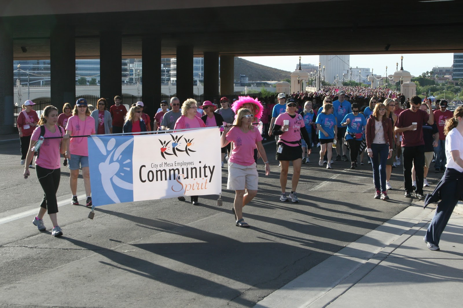 The American Cancer Society Making Strides Against Breast Cancer walk is as  unique and special as the stories that motivate our dedicated walkers, ...