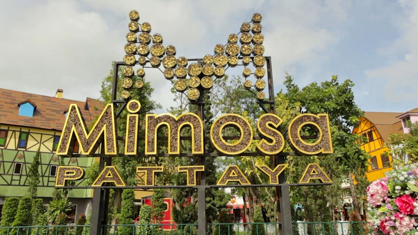 Mimosa-Pattaya