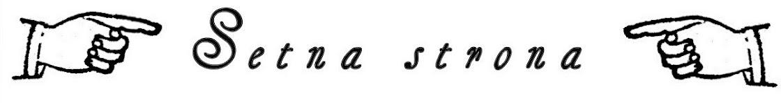 Setna strona - blog literacki