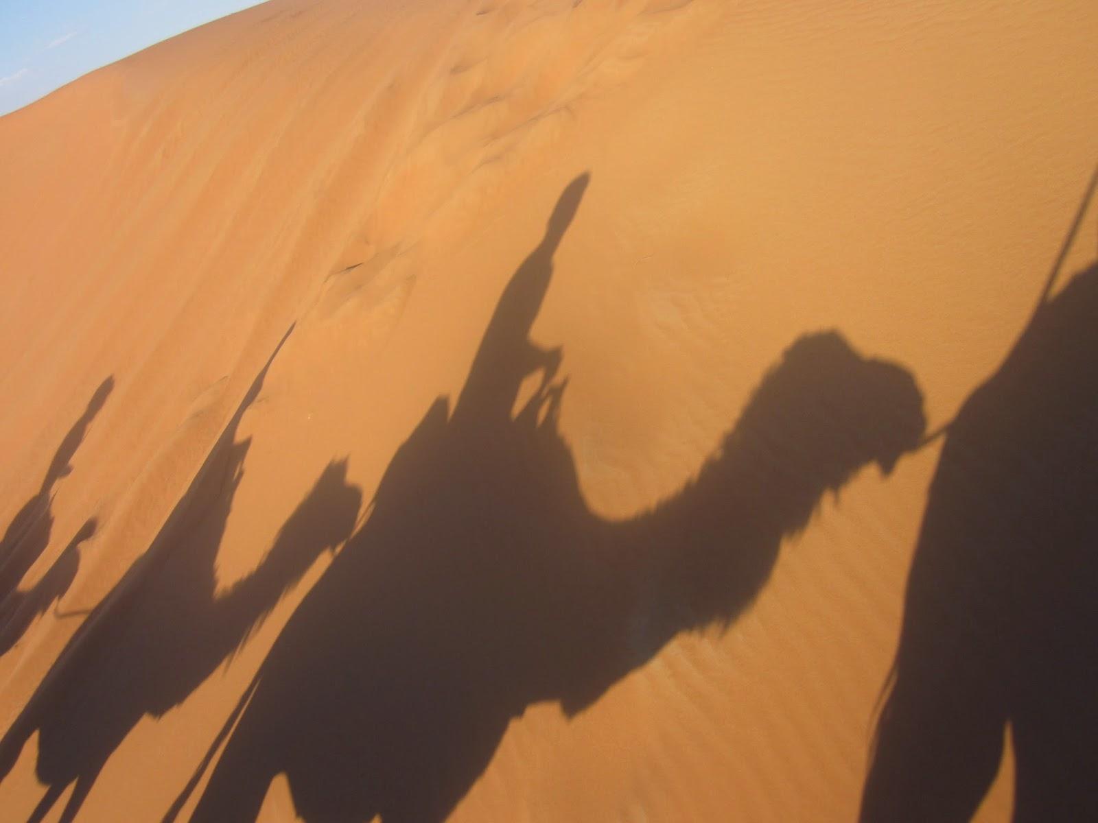 viajes a marruecos, marrakech, desierto, aventura, merzouga, erg chebi