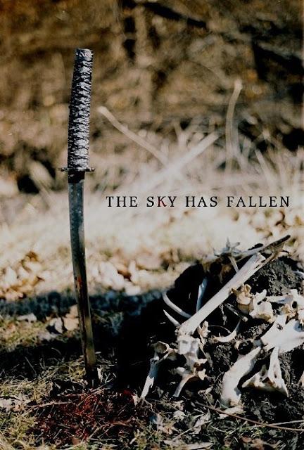 the sky has fallen poster