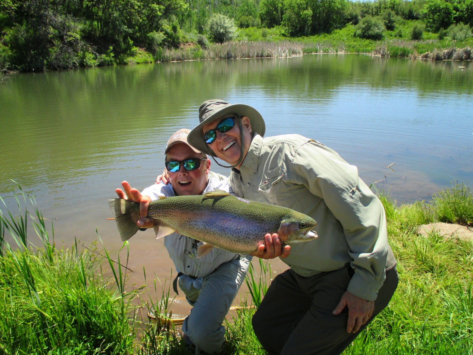 Taylor creek flyshop bar zx ranch for Taylor fly fishing