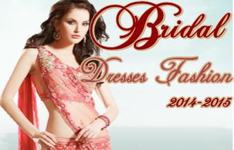 Bridal Dresses 2014