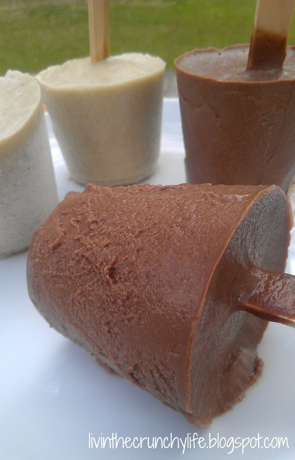 Chocolate (or Banana) Pudding Pops