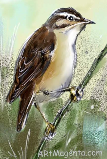 Sävsångare är en fågelmålning av ArtMagenta