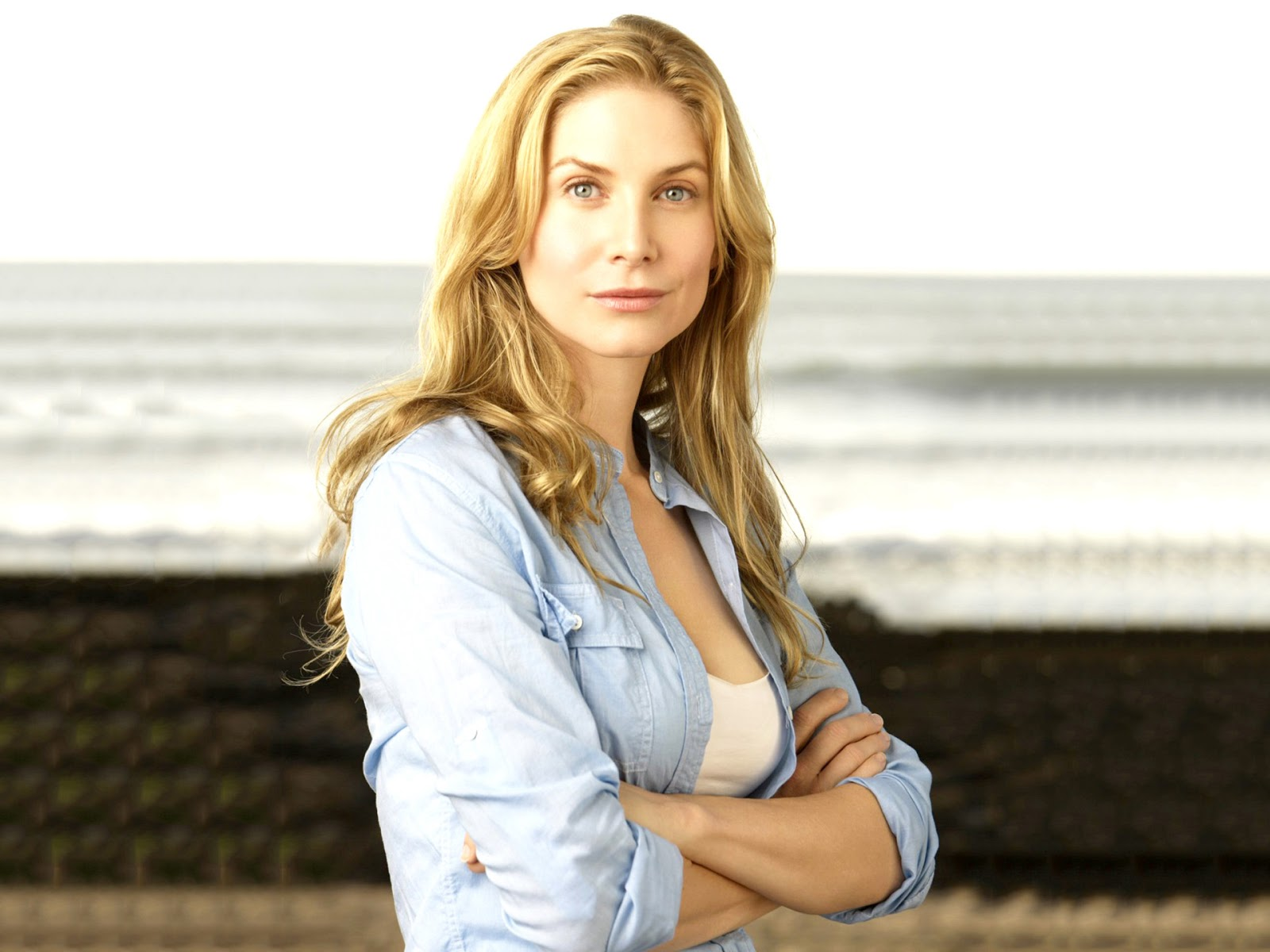 elizabeth mitchell computer hd - photo #24