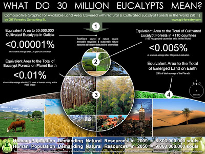 Galicia, Spain: the Potential Environmental Impact of Planting 30 Million exotic Eucalyptus trees is Statistically Insignificant for Gaia or the Ecosystem in the broader sense / Galice, Espagne: l'impact environnemental potentiel de la plantation d'arbres exotiques à 30 millions d'Eucalyptus est statistiquement non significatif pour Gaia ou l'écosystème au sens large / Galicien, Spanien: die möglichen Umweltauswirkungen der Pflanzung 30 Millionen exotischen Eukalyptusbäume ist statistisch nicht signifikant für Gaia oder das Ökosystem im weiteren Sinne / Galicia, Espanja: mahdollisia ympäristövaikutuksia Planting 30 miljoonaa eksoottisia eukalyptuspuita on tilastollisesti merkityksetön ja ​​Gaia tai ekosysteemin laajemmassa merkityksessä / 加利西亚,西班牙:潜在的30万外来种植桉树对环境的影响统计学盖亚或生态系统在更广泛的意义上无意义 / ガリシアは、スペイン:30万エキゾチックなユーカリの木を植えるの潜在的な環境負荷統計ガイアや生態系のためのより広い意味では重要ではありません / Gustavo Iglesias Trabado, Roberto Carballeira Tenreiro & Javier Folgueira Lozano / GIT Forestry Consulting SL, Consultoría y Servicios de Ingeniería Agroforestal, Galicia, España, Spain / Eucalyptologics, information resources on Eucalyptus cultivation around the world / Eucalyptologics, recursos de informacion sobre el cultivo del eucalipto en el mundo
