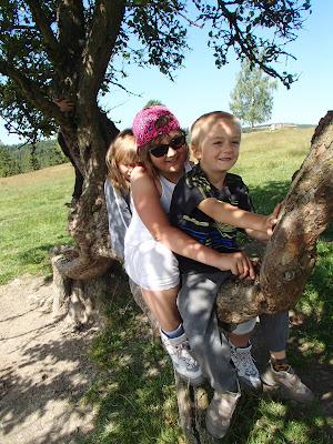 Orawa, Lipnica Wielka, Babia Góra, konie, kucyki, jazda konna, bacówka, żętyca, oscypki, wchodzenie na drzewa