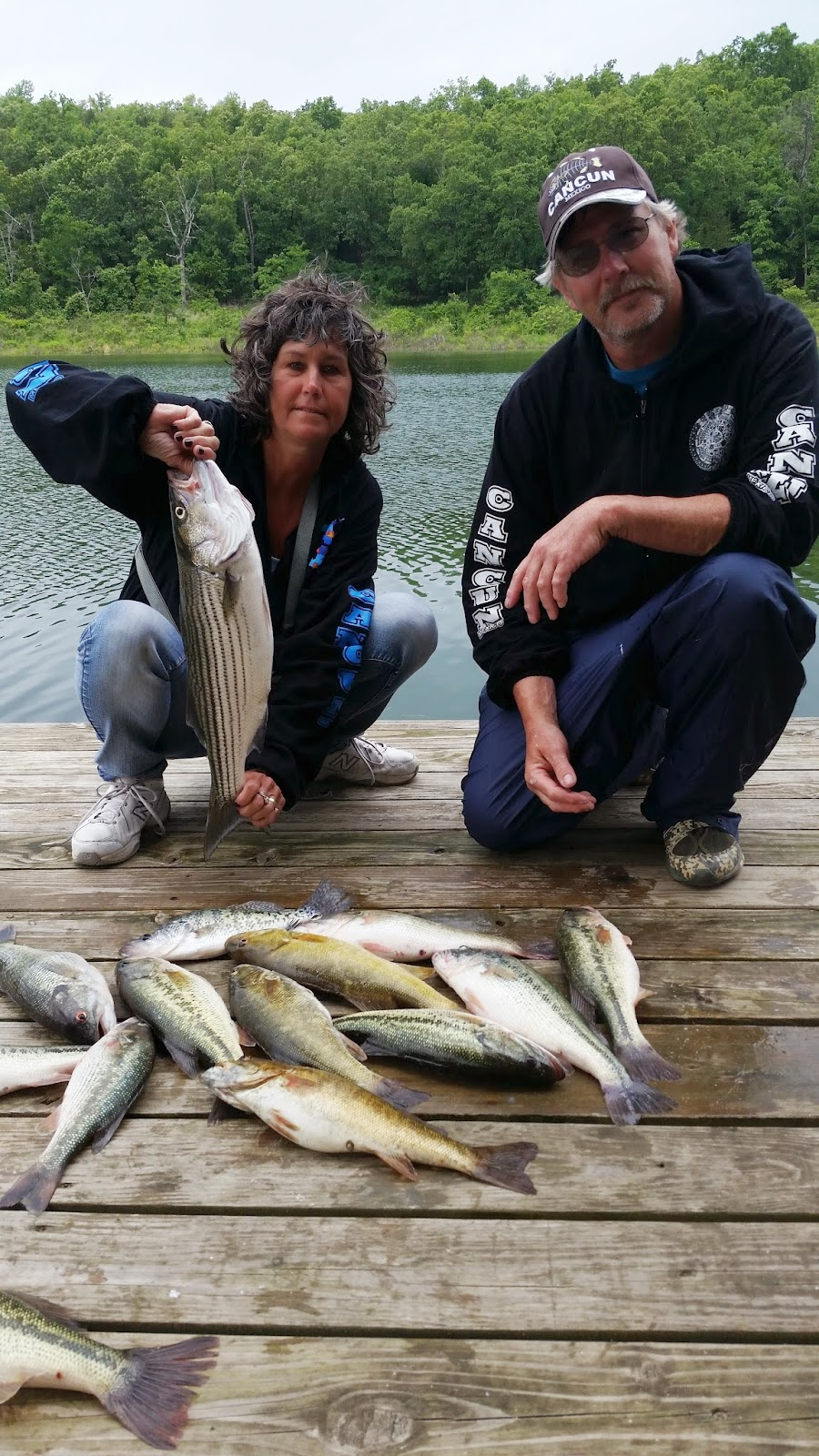 Norfork lake fishing report by hummingbird hideaway resort for Fishing resorts in arkansas
