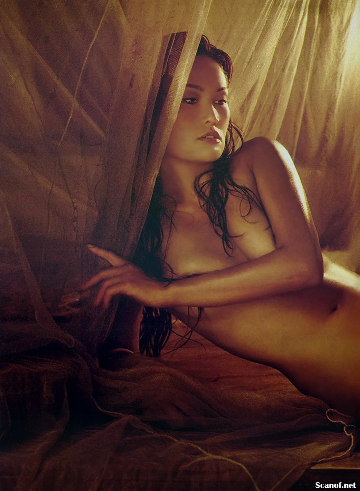 Tia carrere playboy