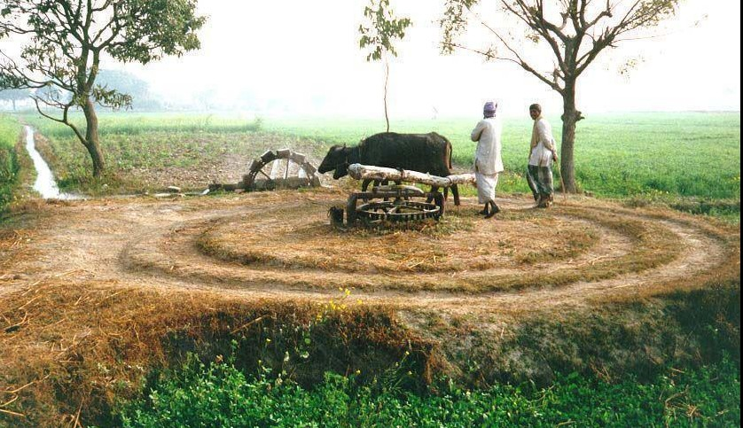 simple essay on village life Short essay on life article shared by life is beautiful but not always easy, it has problems, too, and the challenge lies in facing them with courage.