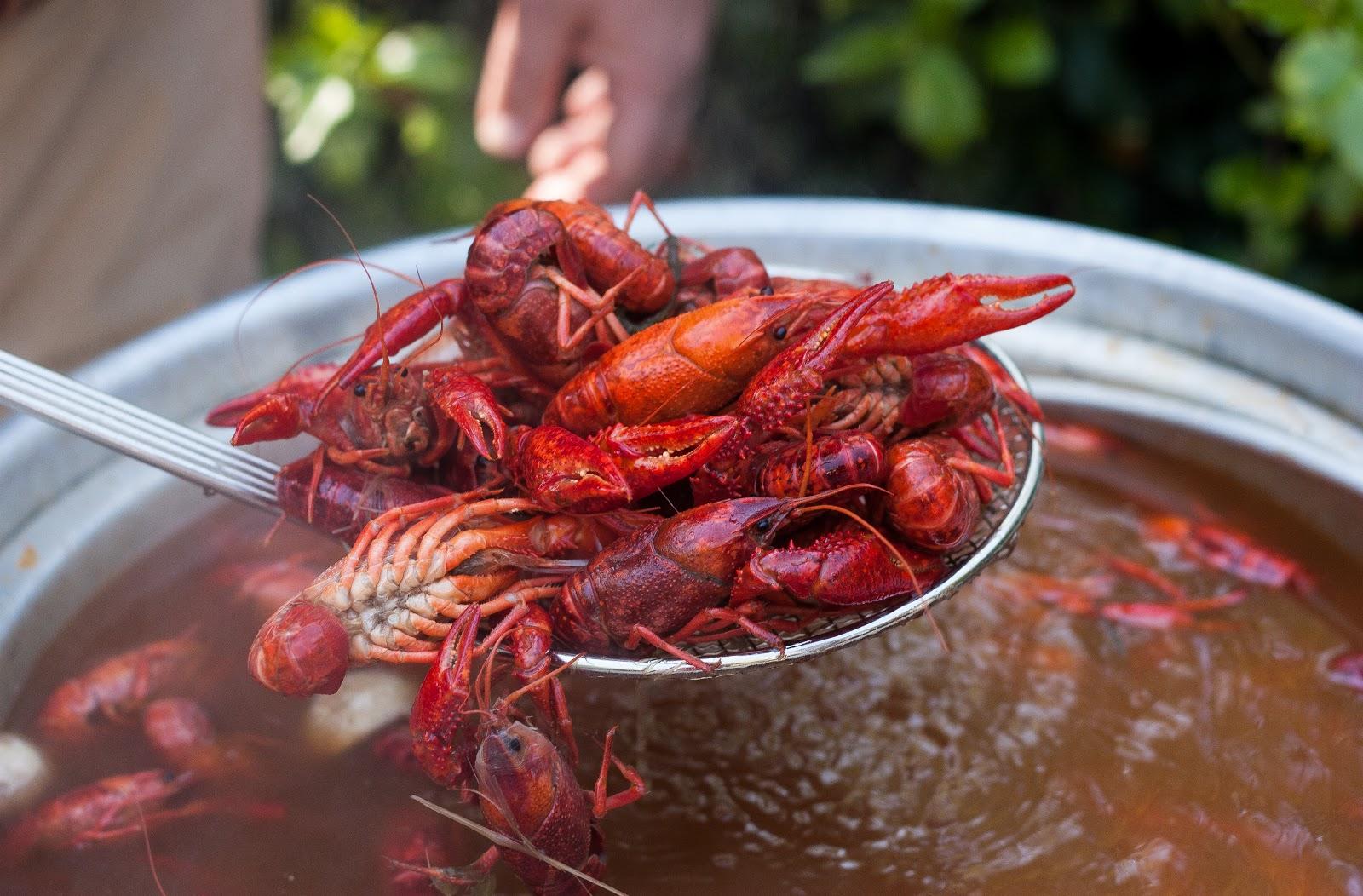 Annual Crawfish Boil | BBP