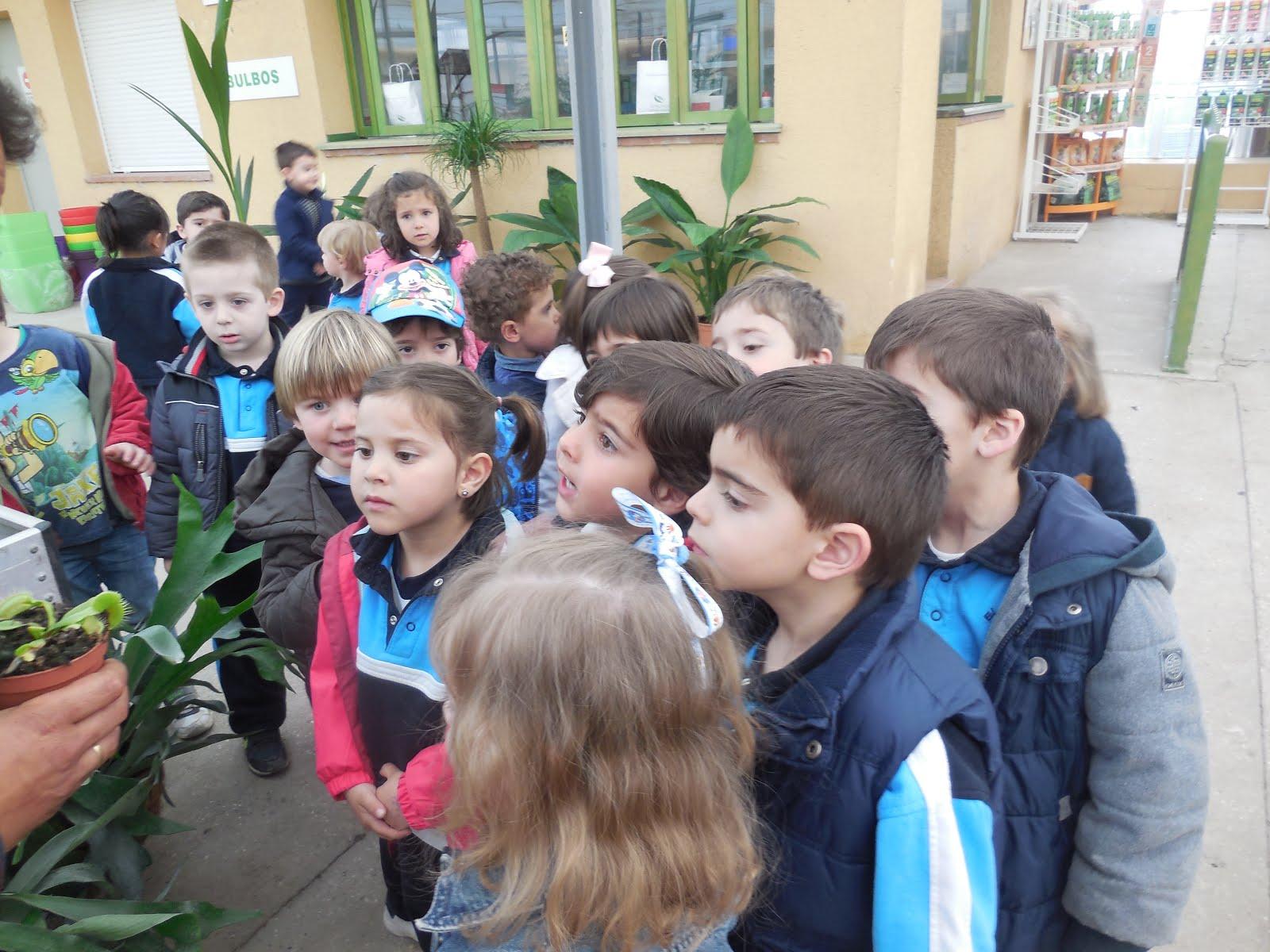 El Jueves Fuimos A Visitar Viveros Gimeno, Donde Pudimos Ver árboles  Frutales Y Oler Un Montón De Flores. ¡Muchas Gracias Por La Planta!