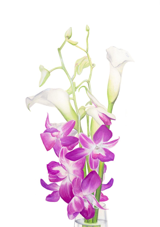 http://2.bp.blogspot.com/-lr_z0MXVwUY/T1l6ev2l-_I/AAAAAAAAAGw/SNtqUCawGUA/s1600/blog_orchid+paint.jpg