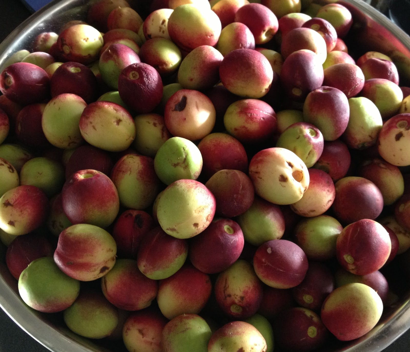 1000+ images about preserving on Pinterest | Nectarine jam ...