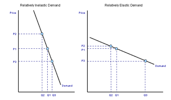 Determinants of elasticity supply