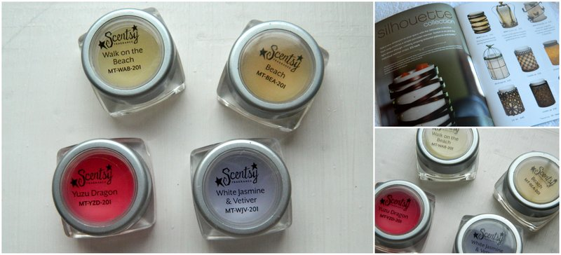 Review: Scentsy Wax Melts #2
