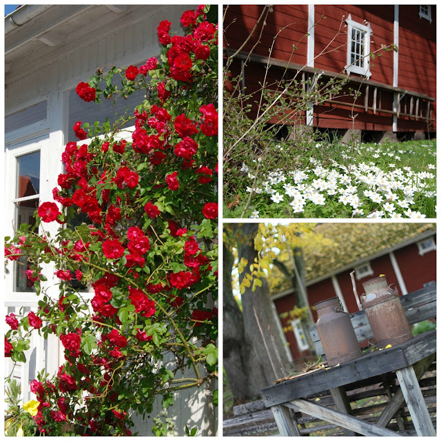 Garden inspiration Sweden