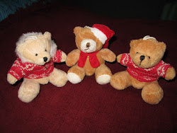 my teddy x-mas