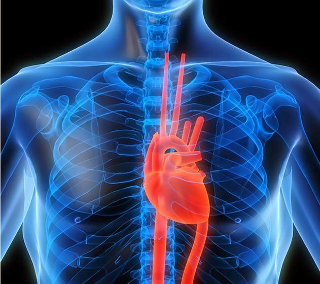أمراض القلب لدى النساء يمكن تجنبها باكراً
