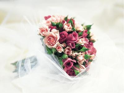 Ruže kao poklon za Valentinovo besplatne čestitke pozadine slike za desktop download