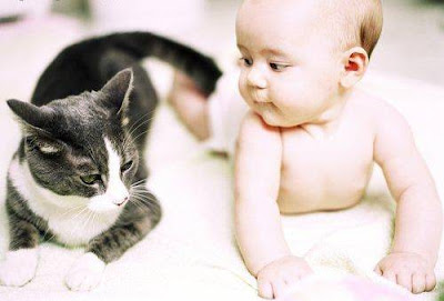cute kid with lovely cat