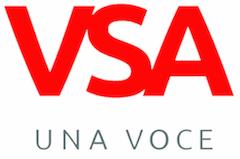 The VSA
