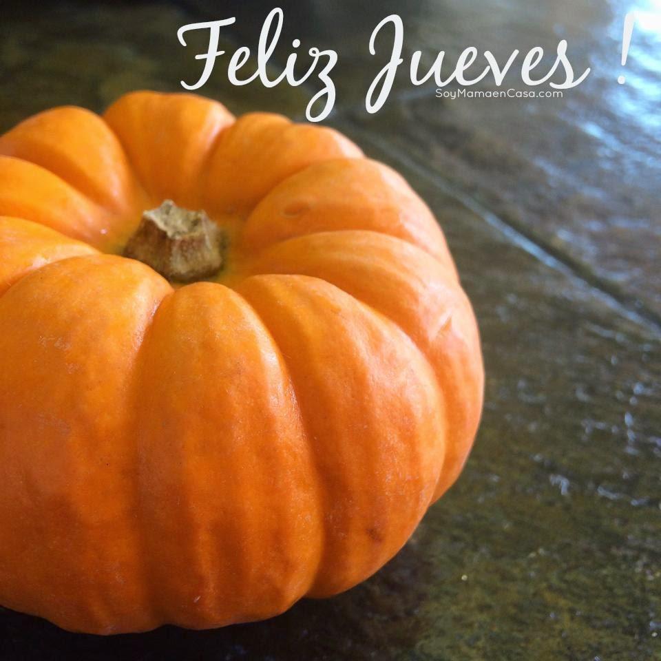 noviembre, calabaza, pumpkin, jueves