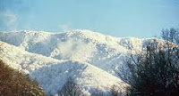 The majestic snow covered Smokies!
