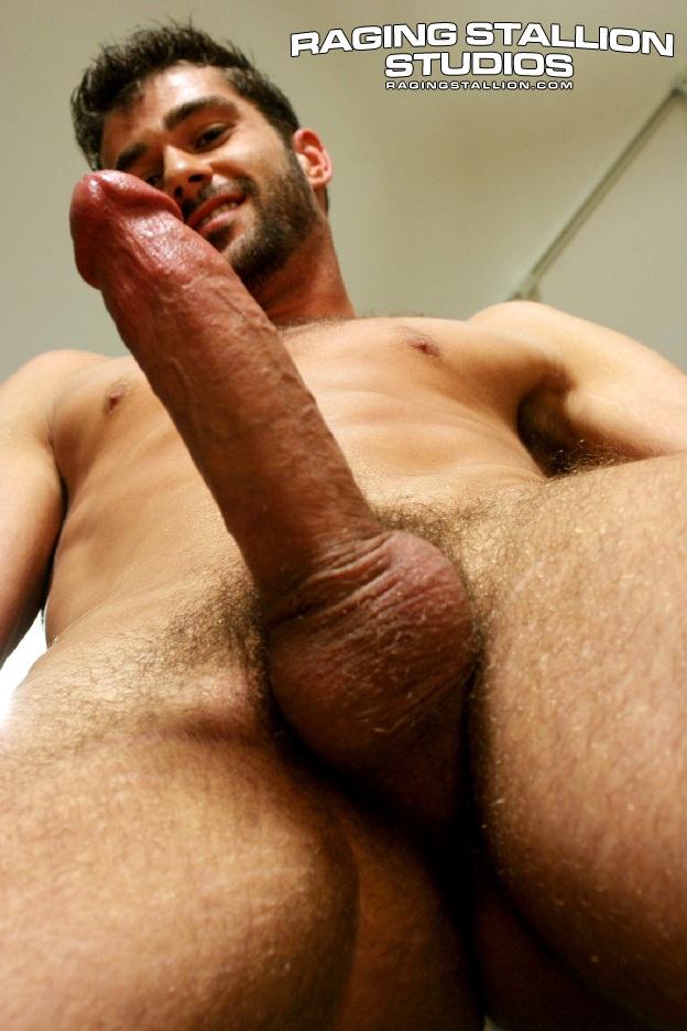 hairy muscle hunks