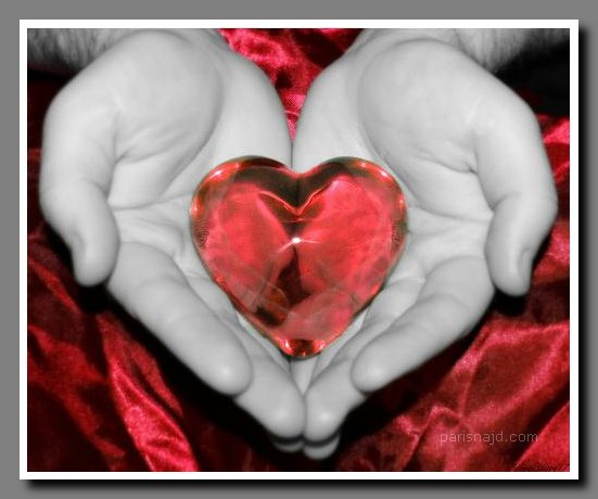 اجمل صور هدايا عيد الحب 2013 صور عيد الحب صور قلوب صور قلوب متحركه صور ورود  httpmazikacairo.blogspot.com