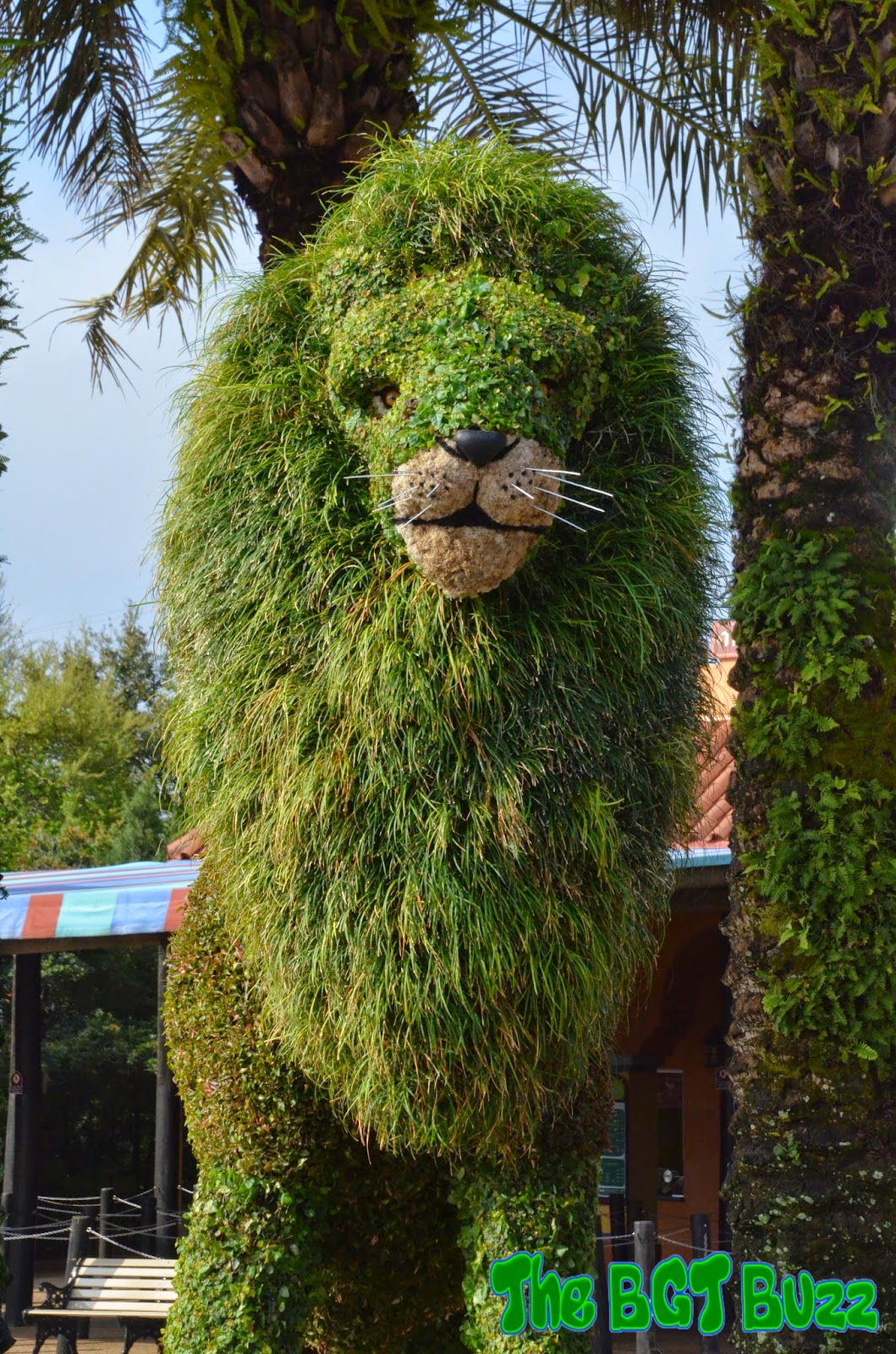 Mugambi The Lion   Located At The Park Entrance Near The Main Tram Stop,  Mugambi The Lion Will Welcome Guests To The Inaugural Busch Gardens Tampa  Food ...