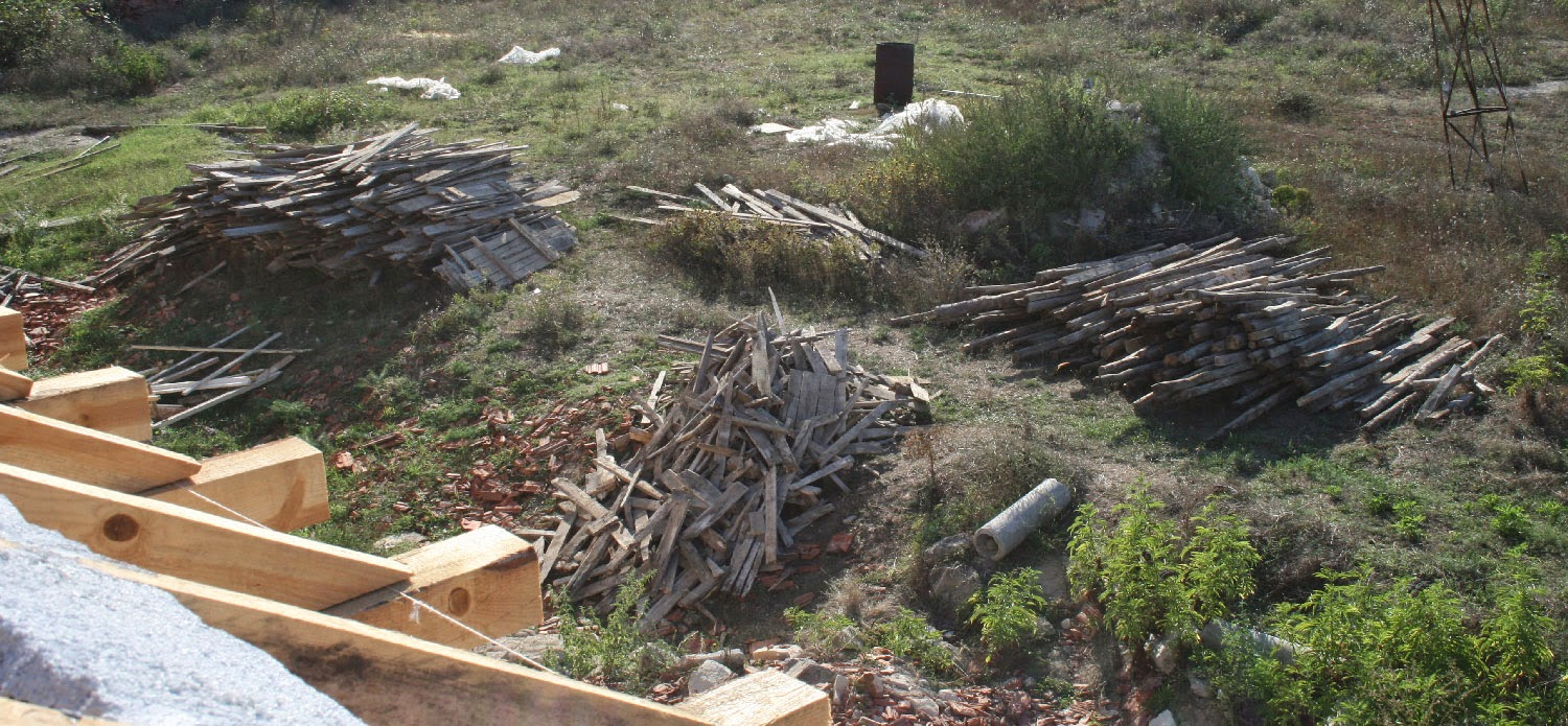 Wood sorted into piles