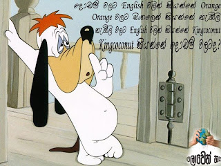 Funny images Sinhala jokes,Sri lankan gossip: Funny Cocalate,Funny ...