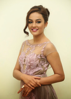 Actress Seerat Kapoor Pictures in Long Dress at Tiger Audio Launch 7.JPG