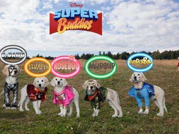 Super Buddies Pictures Super Buddies Assemble