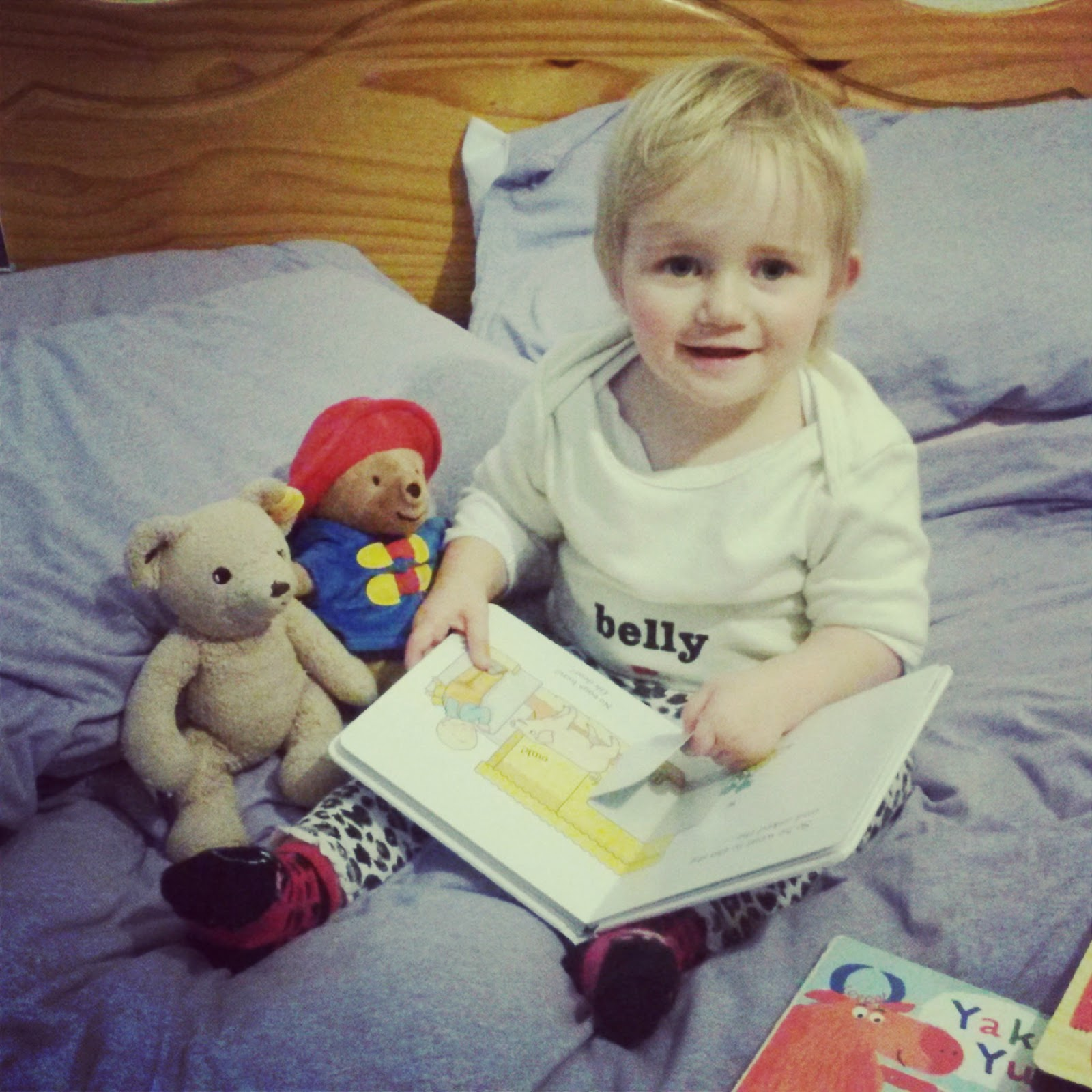 Weekend Blog Hop Paddington Oh Dear Book Steiff Teddy