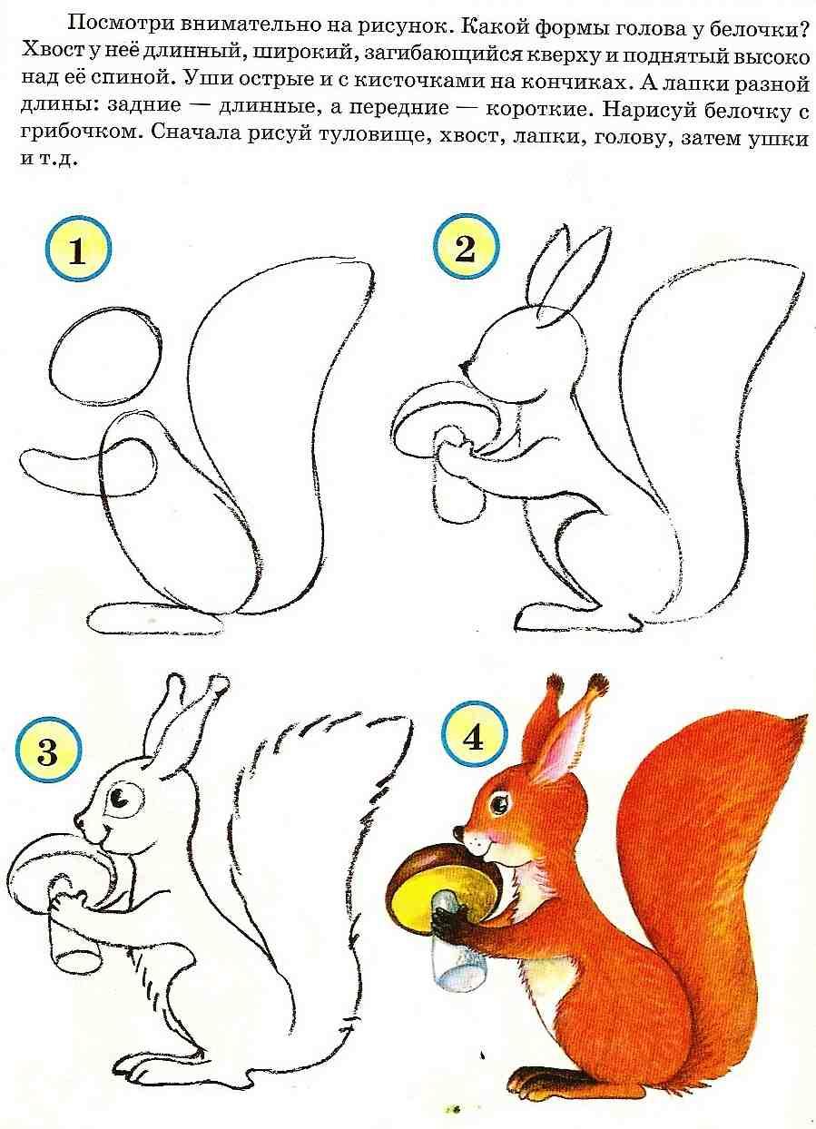 Картинки для срисовывания детям 4 7 лет