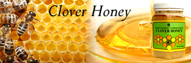 madu, asli, murni, terbaik, kental, manis, tanpa pengawet, unprocess