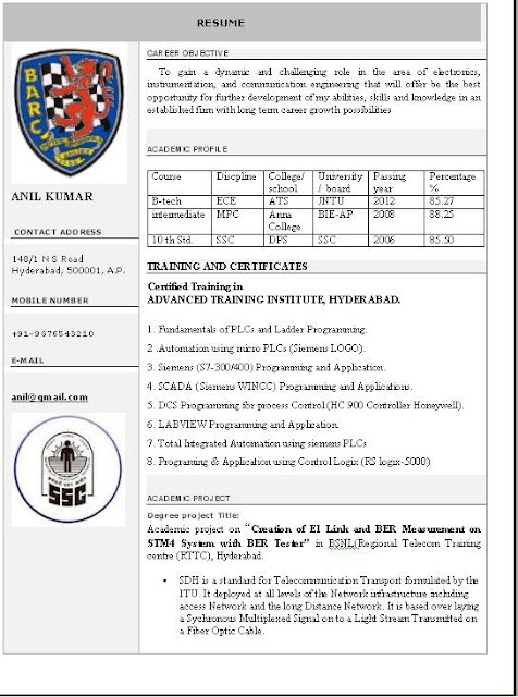 beautiful resume format in word free download
