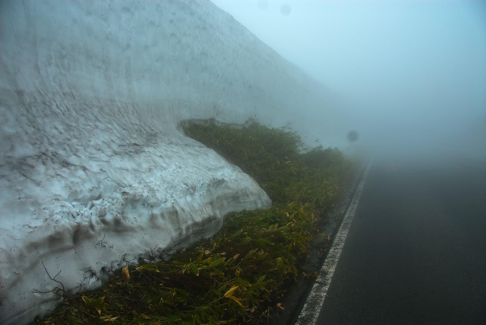 溶けかかった雪の回廊