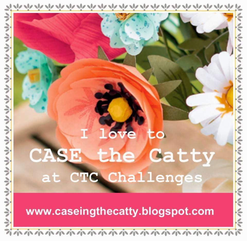 http://caseingthecatty.blogspot.com