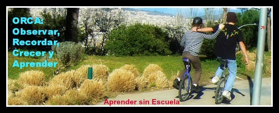 http://orca-alce.blogspot.com.es/